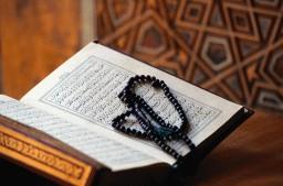 Quran46